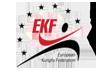 Европейска федерация по кунг фу
